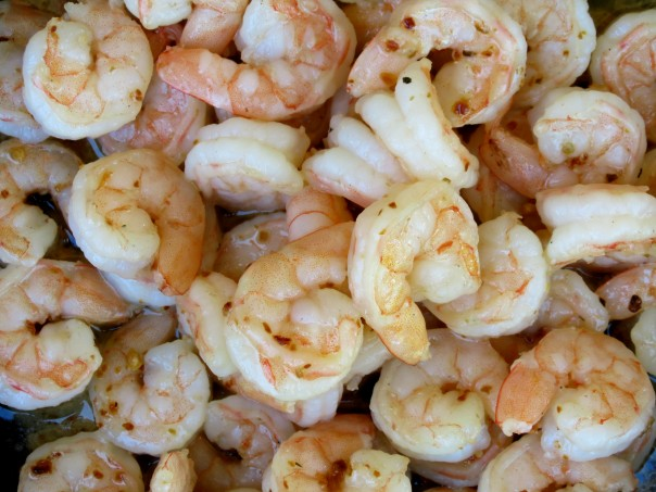 shrimp | Sonoran Spice