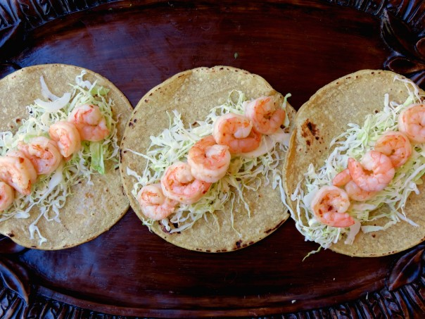 shrimp and cabbage on tortillas