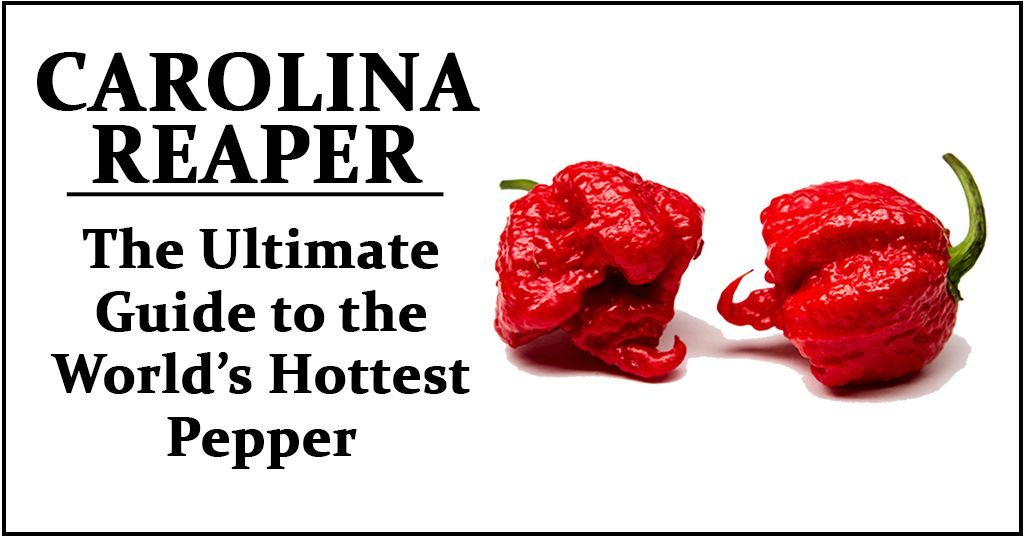Carolina Reaper Wiki