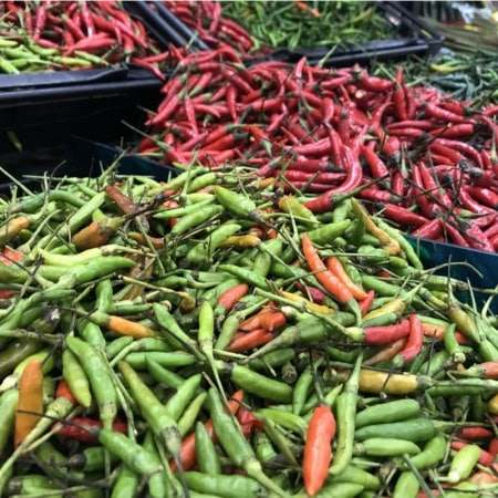 A beautiful mix of different colored Bird's Eye Peppers