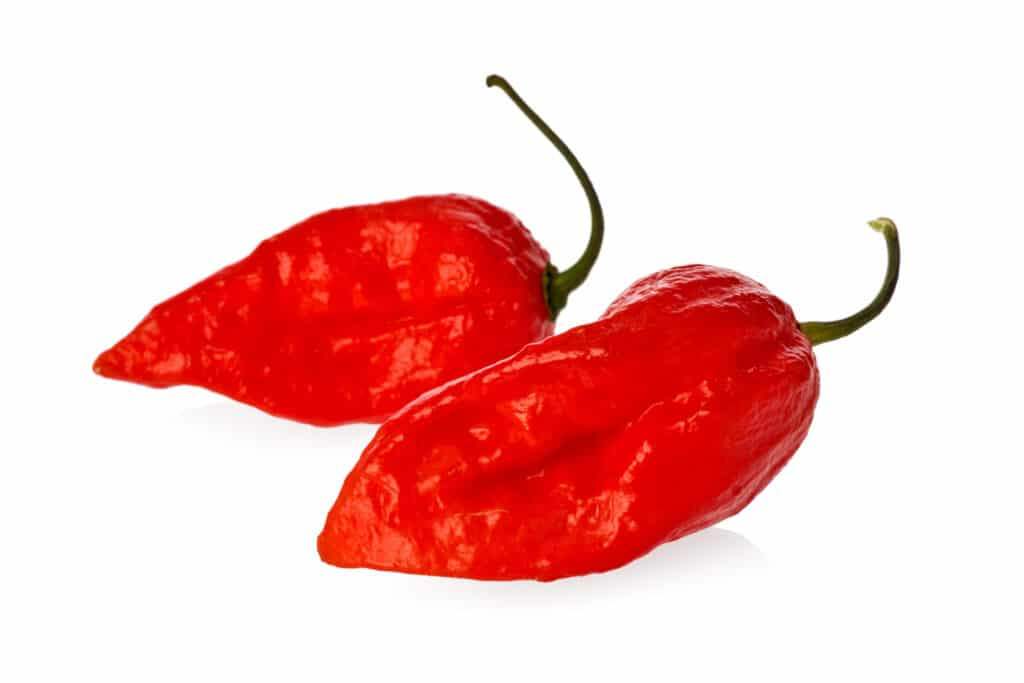 Red Bhutlah Peppers